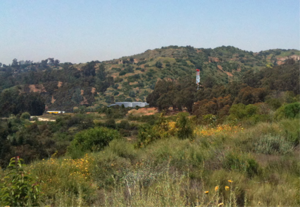 Photo - Whittier Hills view